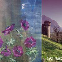 Dal 4 luglio sbocciano i fiori di Matilde Beretta al Castello